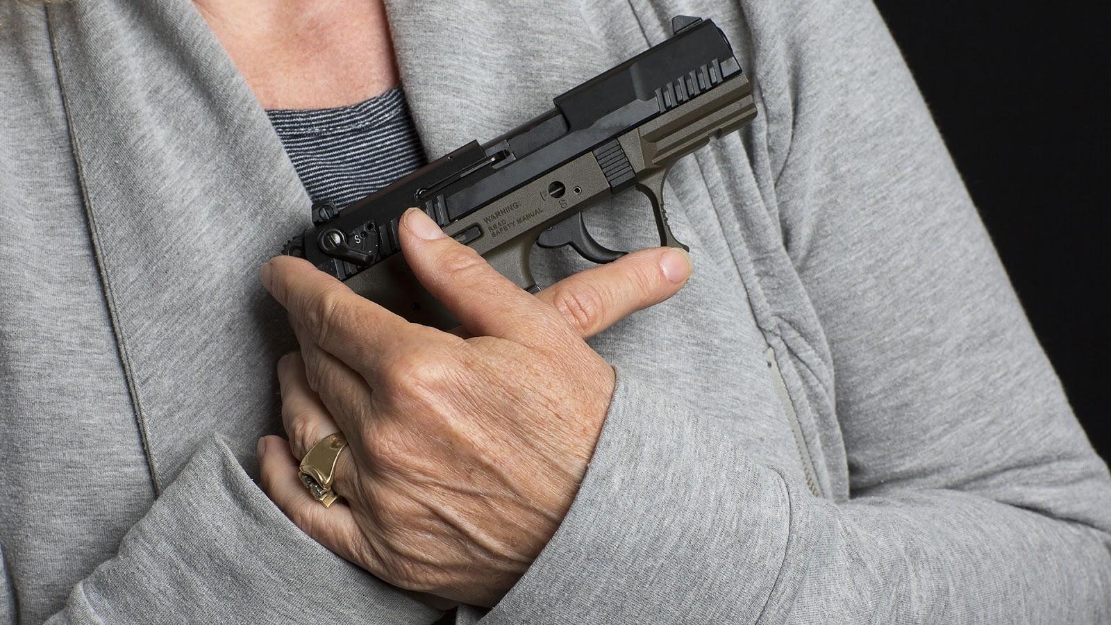 HORNADY LIGHT MAGNUM FIREARMS GUN RIFLE PISTOL AMMO SHOTGUN PATCH MICHIGAN DEER