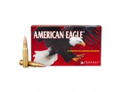 Federal American Eagle 308 Winchester 150 Grain FMJ Case AE308D-CASE