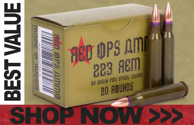Best Value on 223 REM ammo